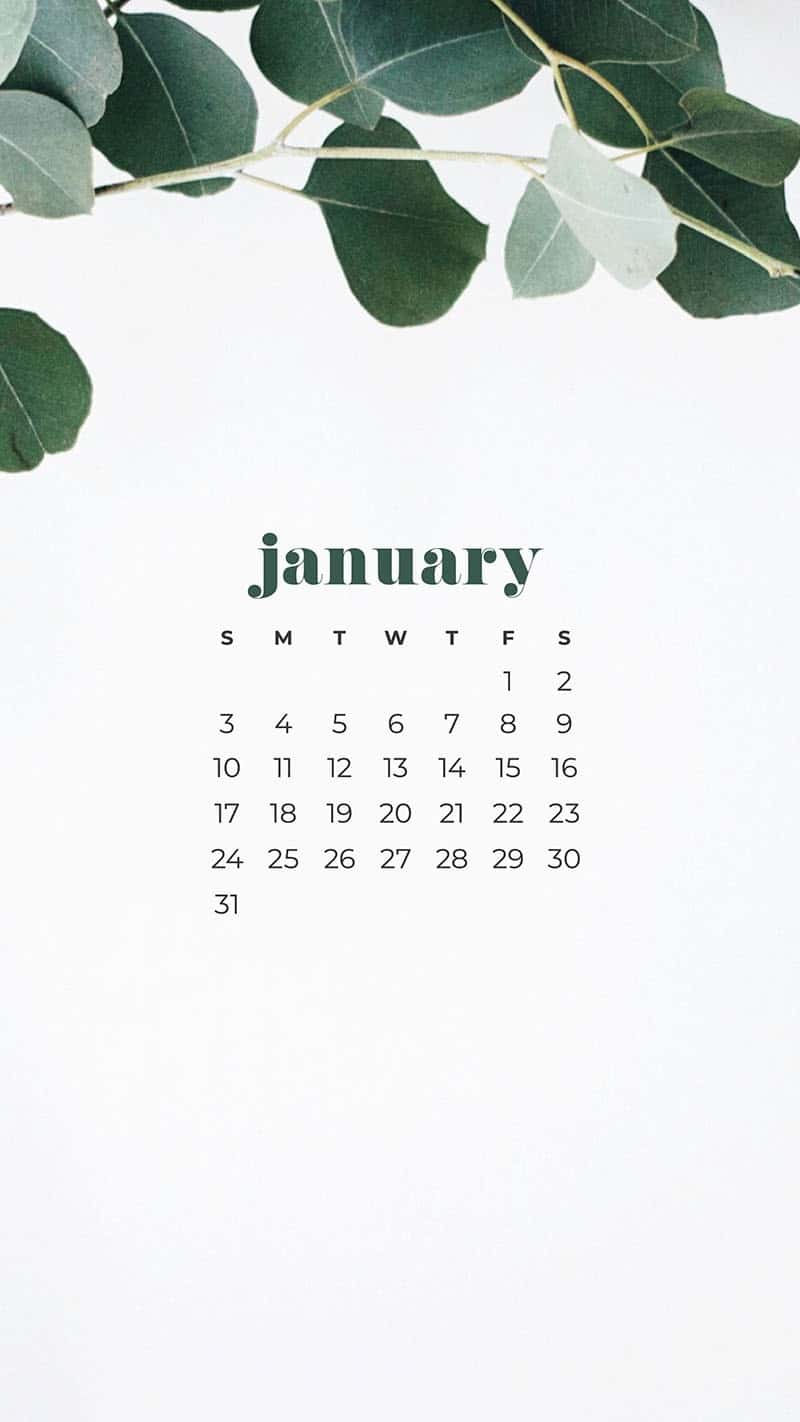 January 2021 Calendar Wallpapers 30 Free Designs To Choose From Calendar Wallpaper Desktop Wallpaper Calendar January Wallpaper