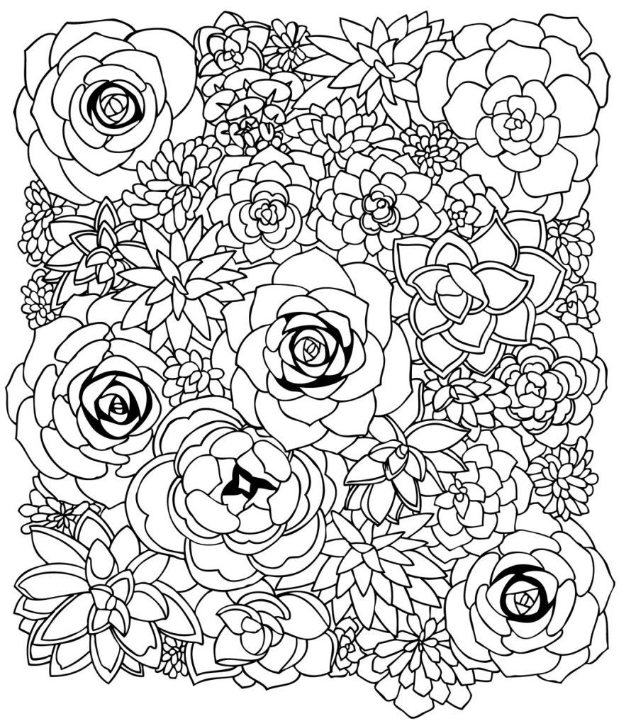 Succulent Coloring Pages Flower coloring pages, Color