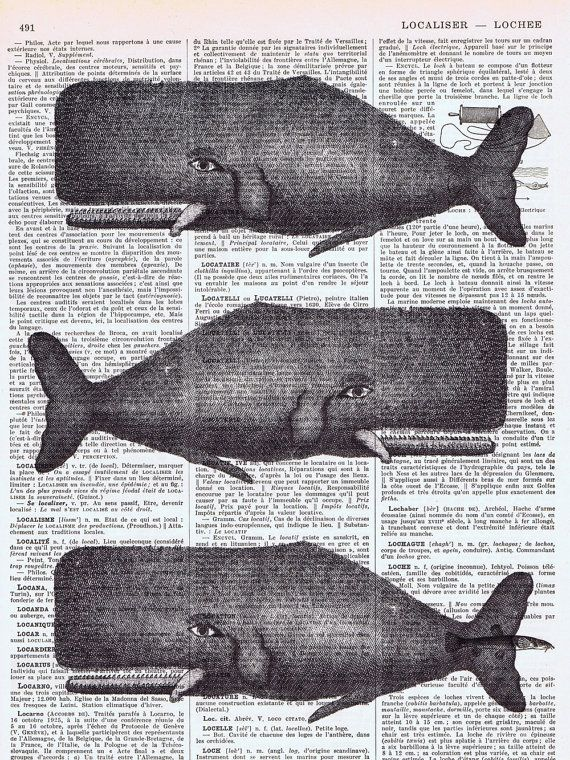 Vintage Whale Illustration