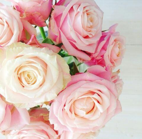 #Rosen #Blumen #Blumenstrauß #rose #pastell #flowers #fleur #love
