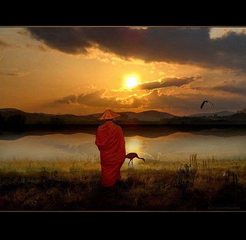 The Importance of Gassho Meditation - Reiki Rays ...