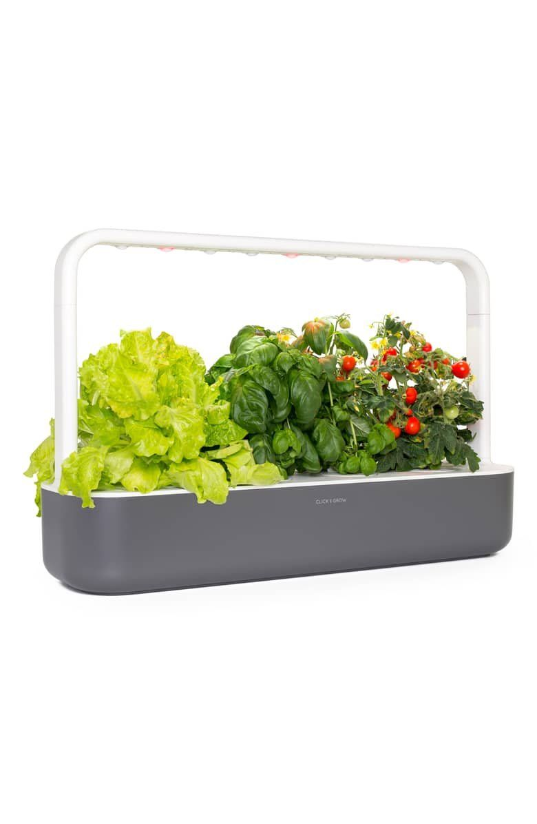 Click Grow Smart Garden 9 Self Watering Indoor Garden Smart Garden Self Watering Indoor Garden