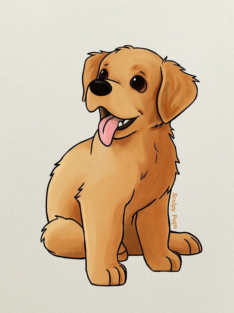 Golden Retriever Puppy Drawing By Sculptedpups Puppy Drawing