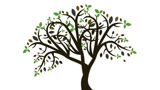 line art drawings of trees free vector colorful tree tree vector rh pinterest com tree vector free ai tree illustration free vector