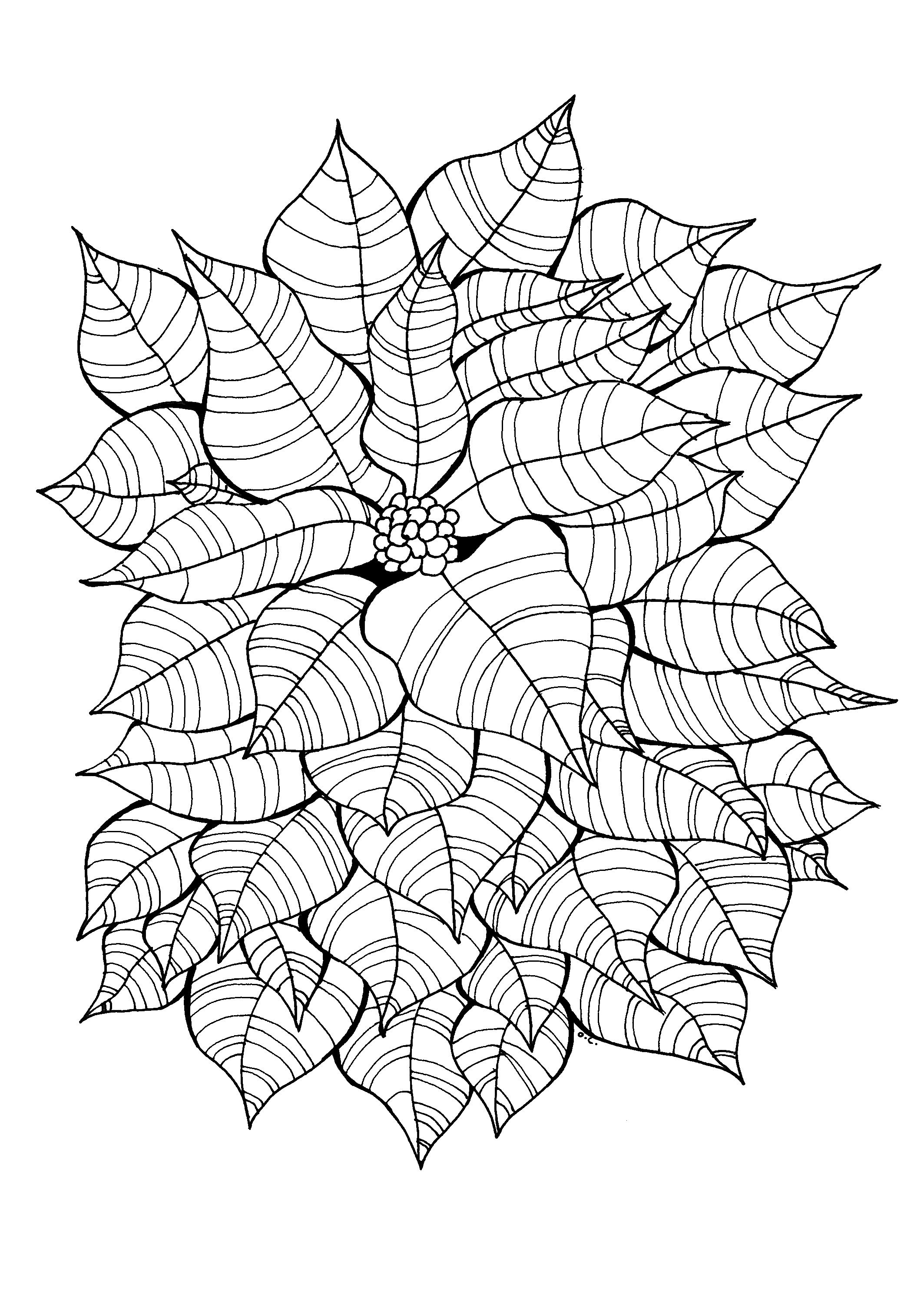 Coloring page adults drawing flowers vegetation tree art zen