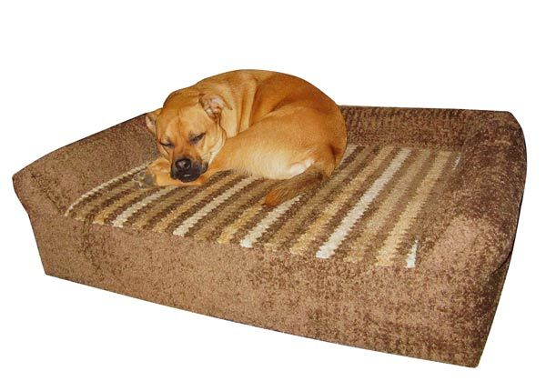 Jack is loving the orthopedic foam bed made with sunbrella chenille fabrics #smart #pet #bed