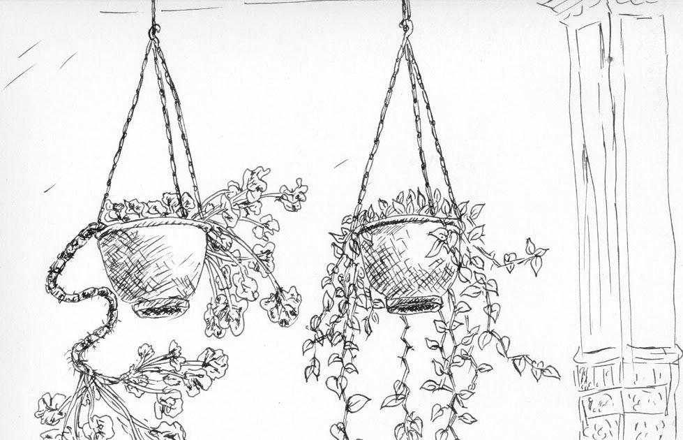 18 Gambar Sketsa Bunga Pot Gambar Sketsa Pot Bunga Gantung Pada Dasarnya Sketsa Digunakan Sebagai Kerangka Di Dalam Karya Seni Luk Sketsa Bunga Sketsa Bunga