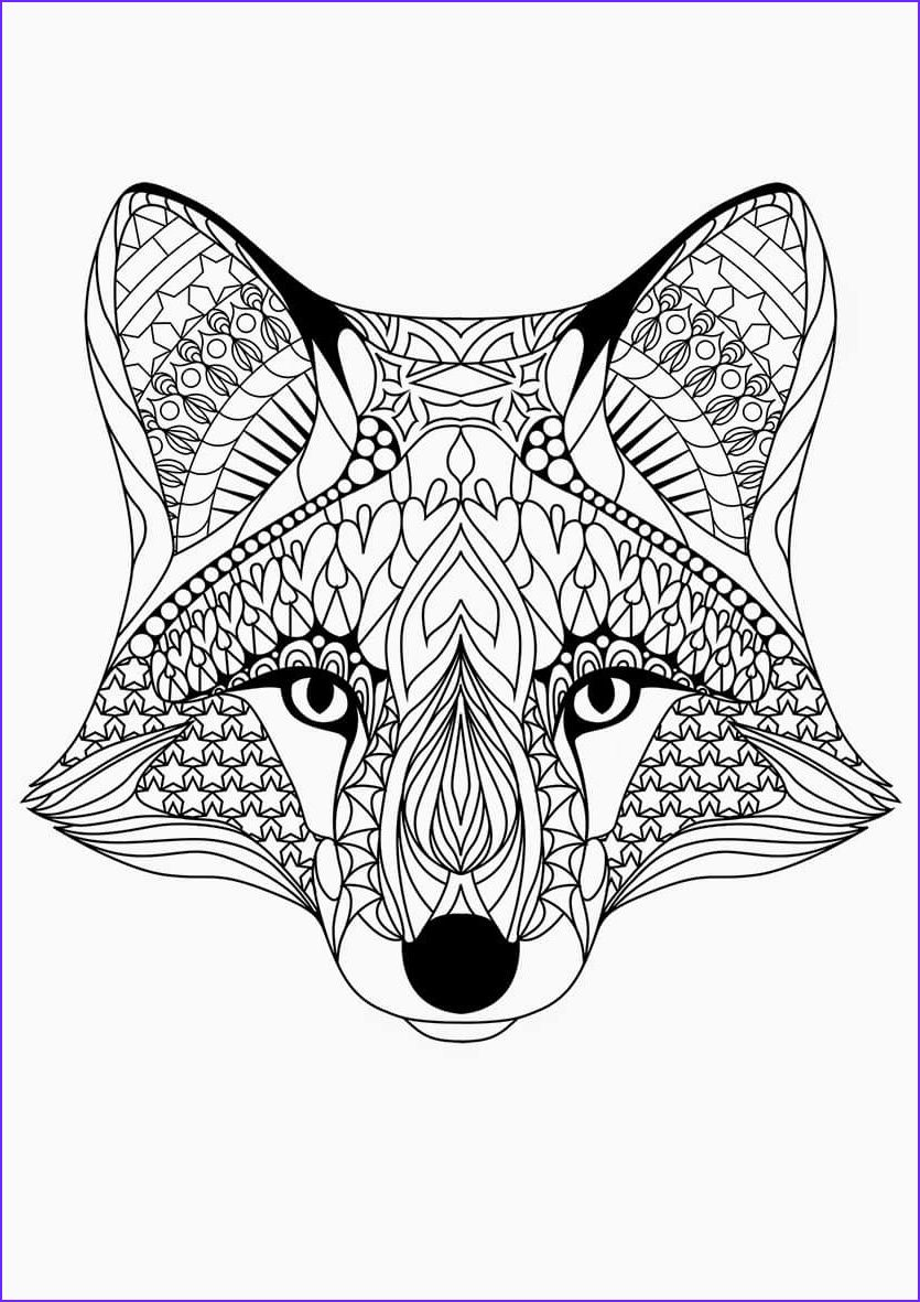 15 Cool Downloadable Adult Coloring Pages Photography In 2020