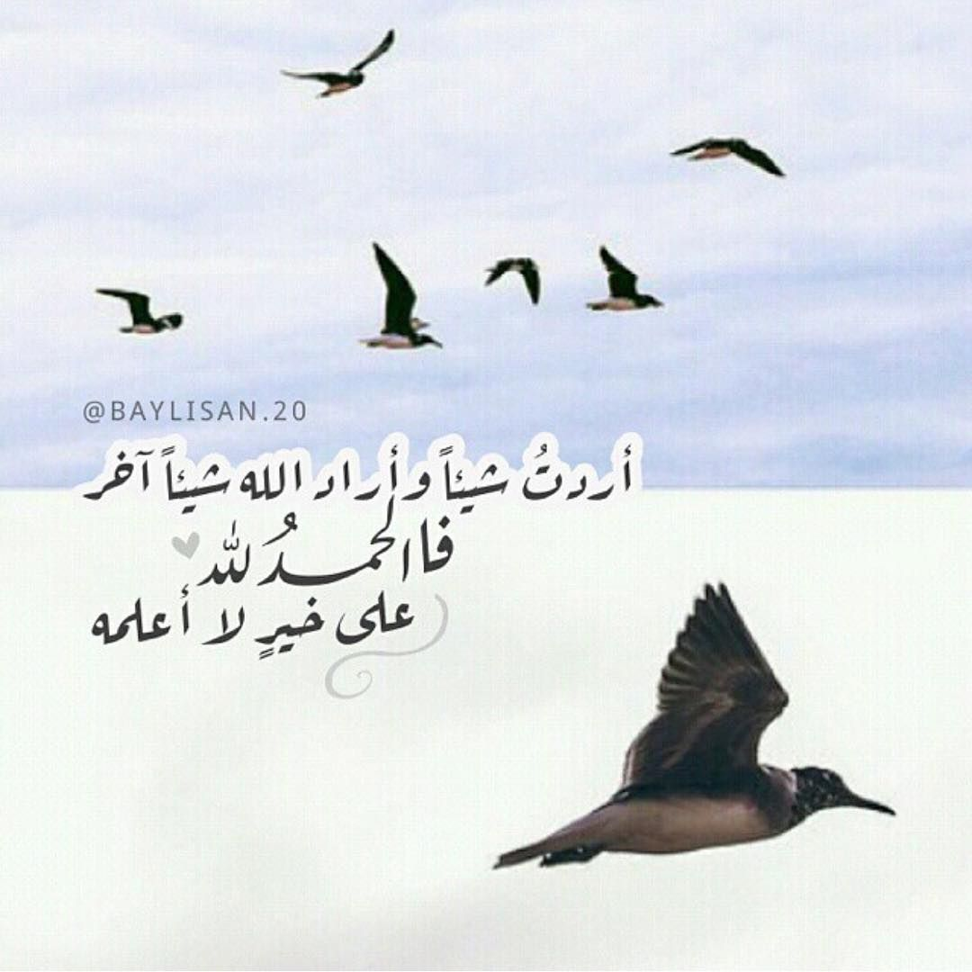 Omnyat Arabic Quotes With Translation Islamic Quotes Arabic Quotes
