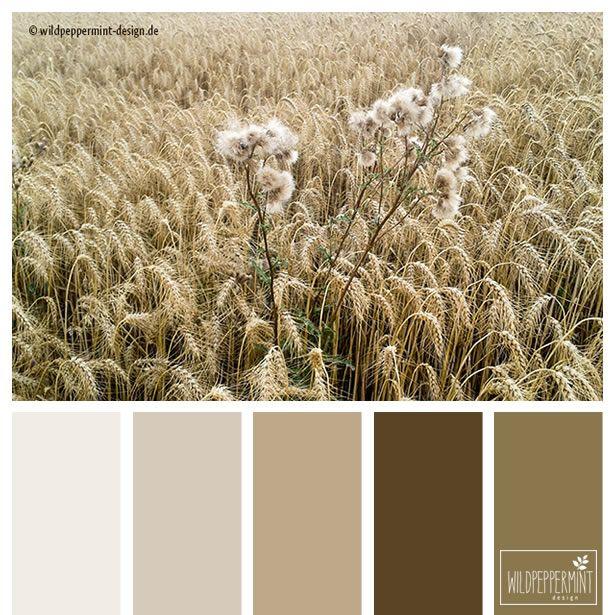 Sommerfarben warm braun beige harmonisch soft - Wandfarbe braun beige ...