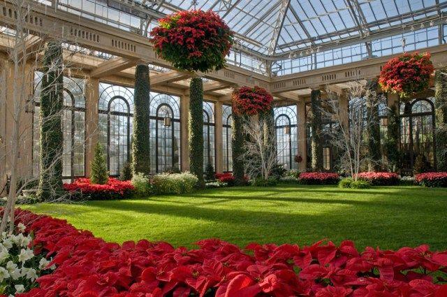 Espectaculares jardines navideños Conservatories, Outdoor ideas - jardines navideos