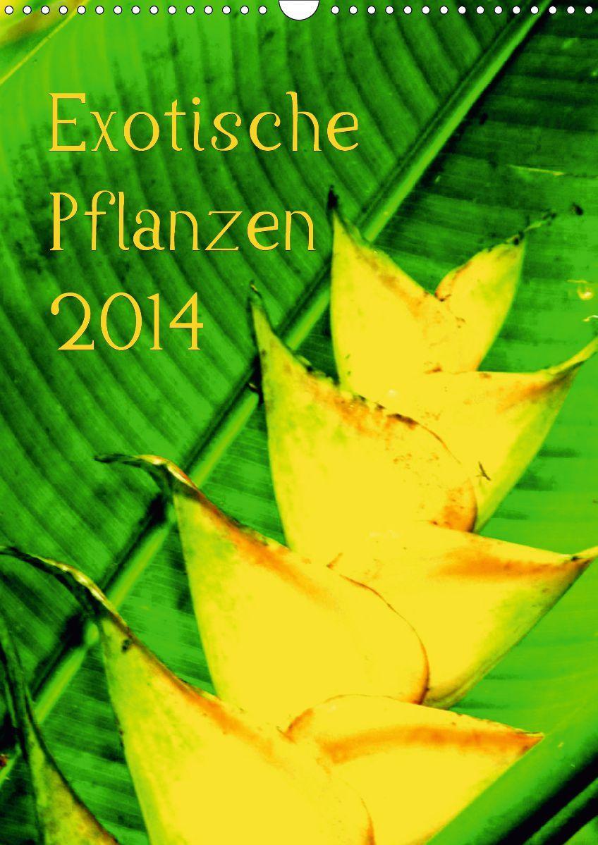 Exotische Pflanzen 2014