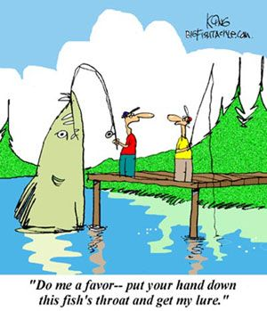 Bigfishtackle com 39 s fishing comics see more at http www for Is too much fish bad for you