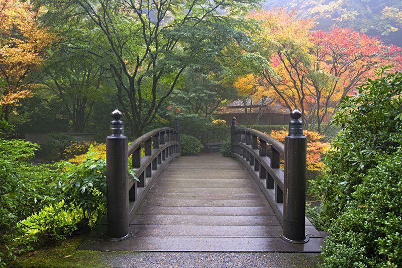 Japanese Wooden Bridge wall Mural Wall murals and Walls