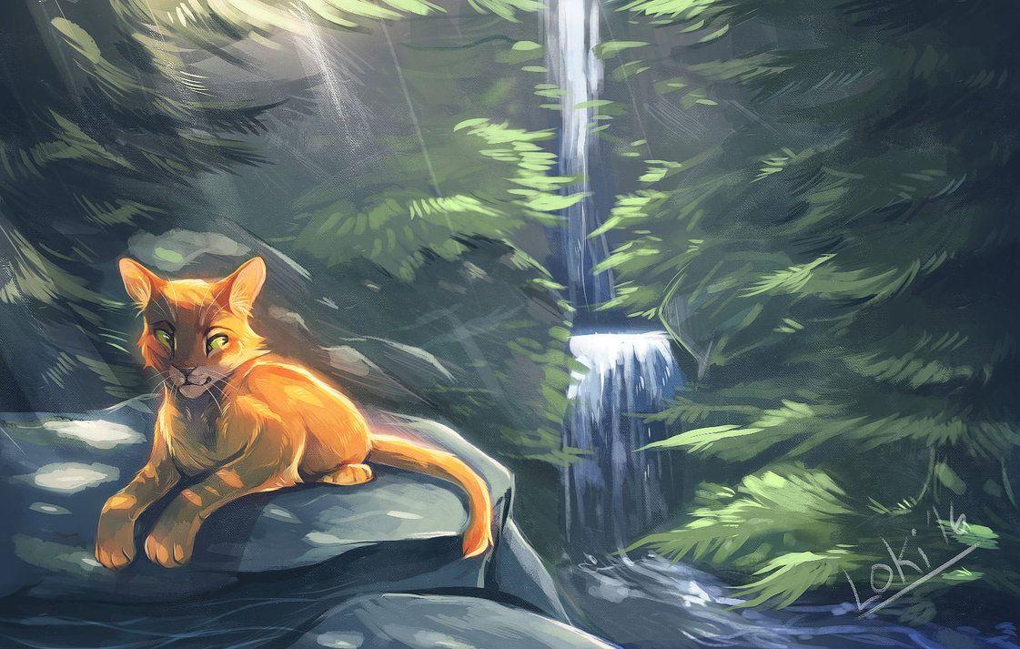 красивые картинки коты воители с природой волос лице