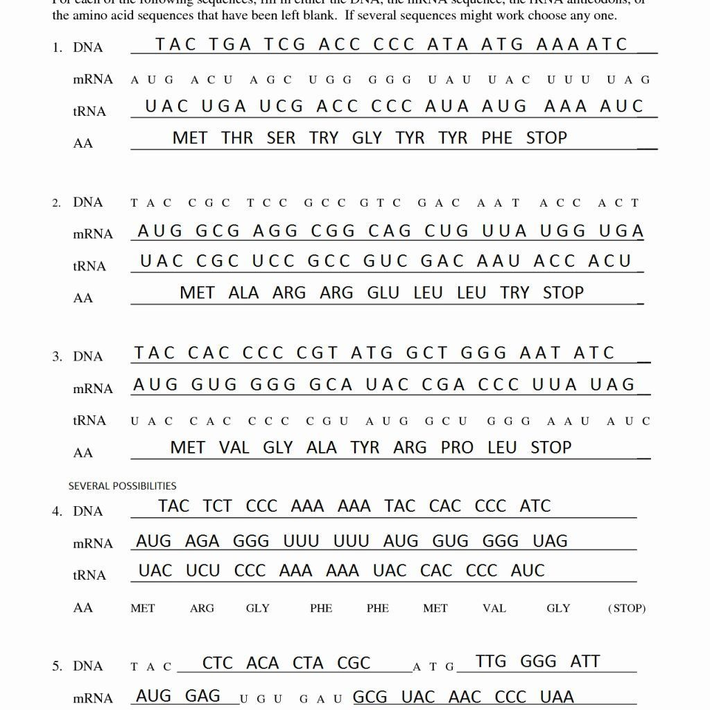 Biology Transcription And Translation Worksheet Worksheets Are Definitely T In 2021 Transcription And Translation Dna Transcription And Translation Dna Transcription Transcription and translation worksheet key