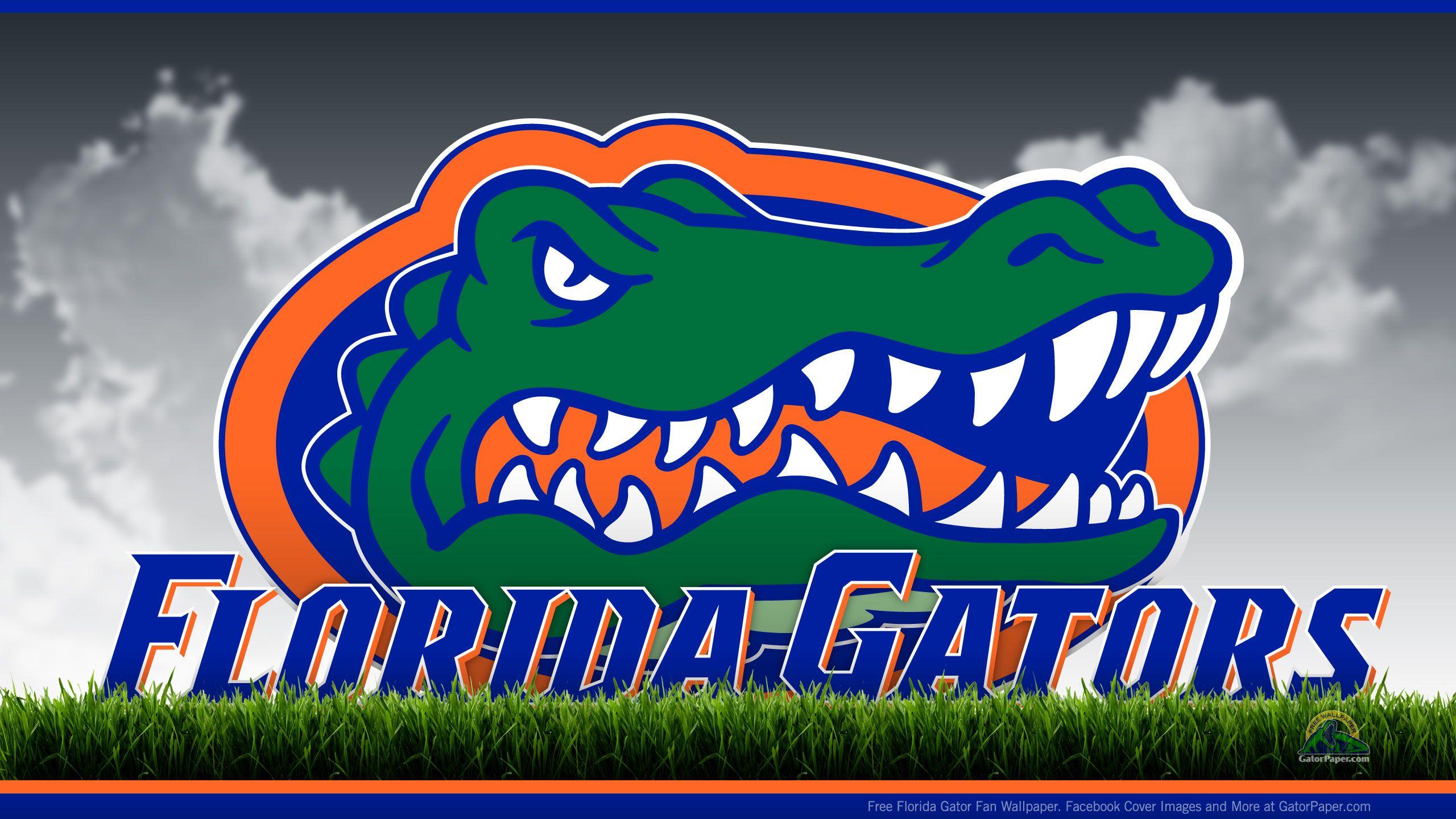Image For Florida Gators Football Wallpaper Florida Gators Football Florida Gators Wallpaper Florida Gators