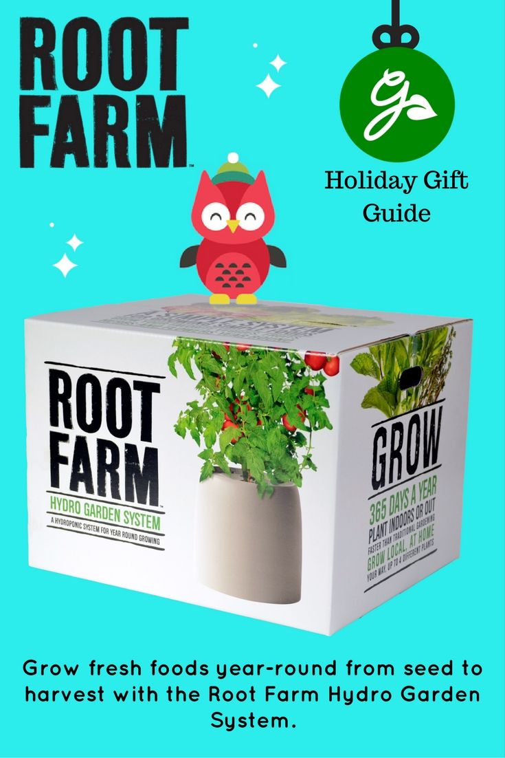 Pin By Angie Gray On Hydro With Images Hydro Gardening Hydro