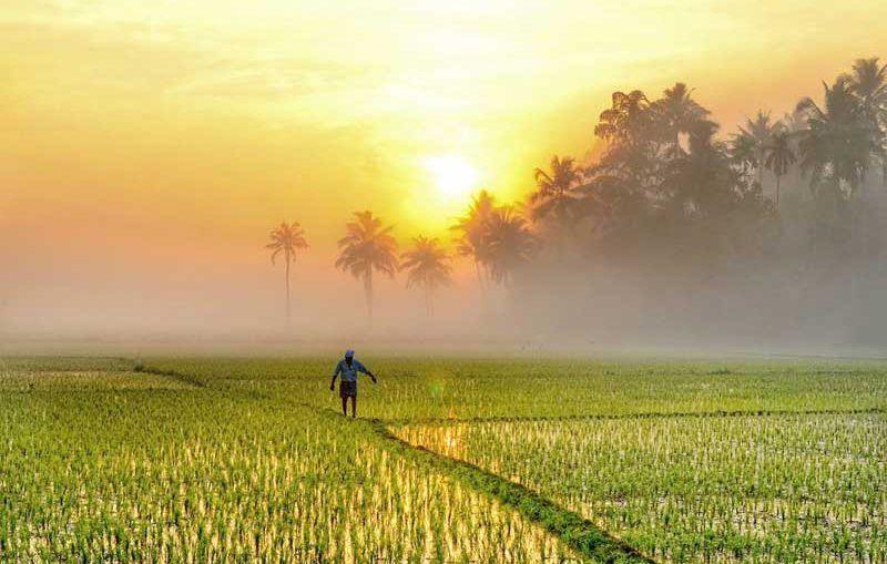 Palakkad Photos Kerala Destinations Places To Visit Kerala Photo