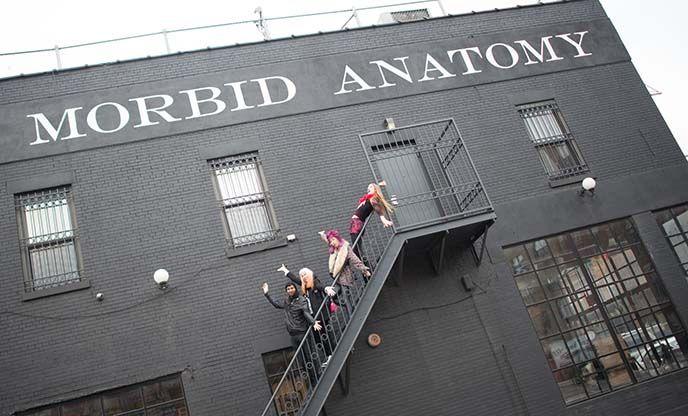 Visiting the Morbid Anatomy Museum in Brooklyn: Medical anatomy wax ...