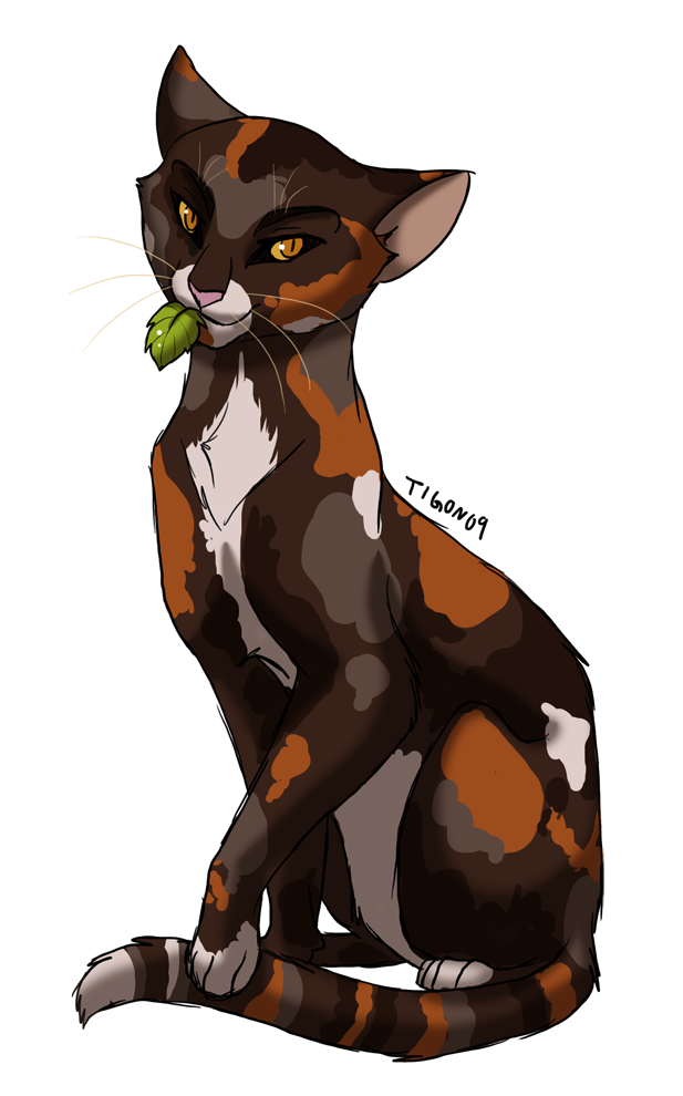 Spottedleaf, the pretty thunderclan medicine cat. She died