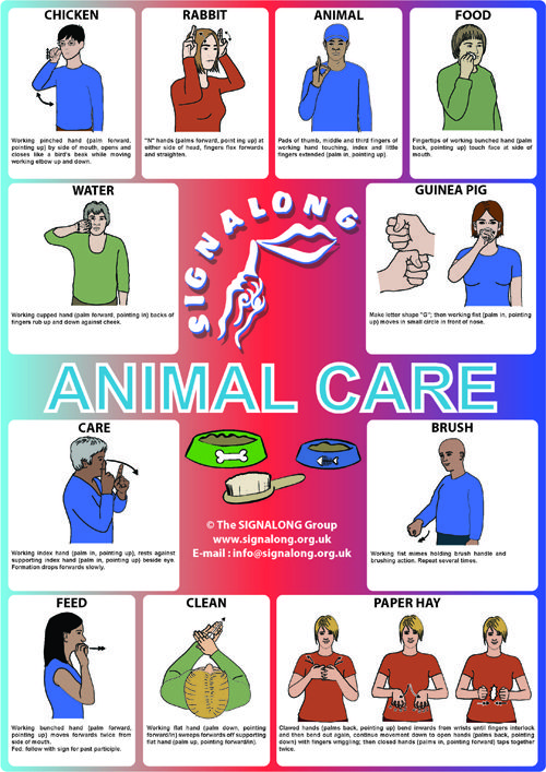 Animal Care Poster - BSL (British Sign Language) Sign language - baby sign language chart template