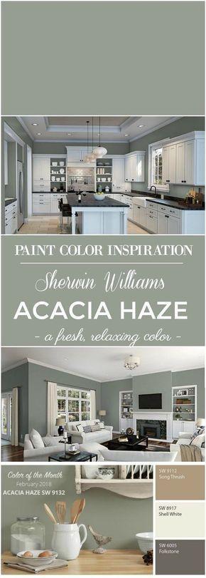 Sherwin Williams Acacia Haze Paint Color