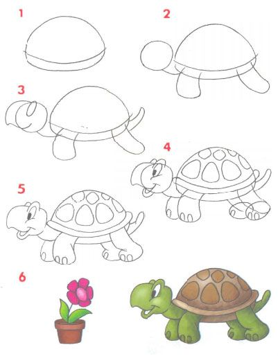 how #to-draw a #Turtle