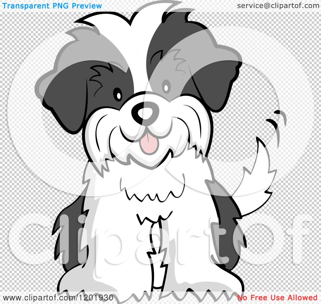 Cartoon Of A Cute Shih Tzu Puppy Dog Sitting And Wagging His Tail