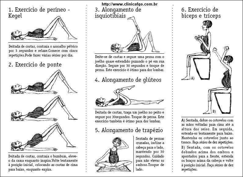 exercícios de kegel pdf - Pesquisa Google