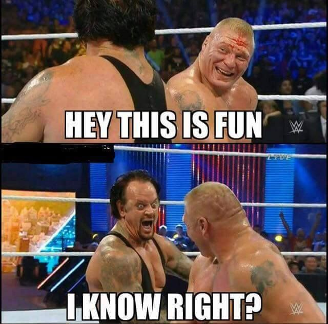 Brock Lesnar And The Undertaker Funny Moment At Wwe Summerslam 2015 Wwe Funny Wwe Memes Wwe