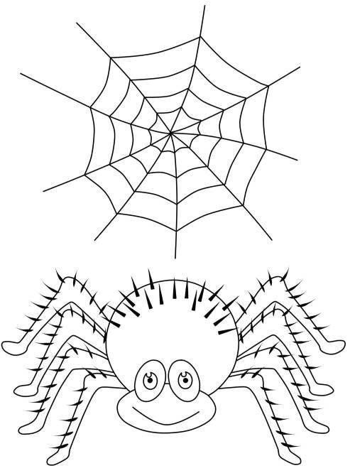 Halloween: Spinne und Spinnennetz zum Ausmalen | malvorlagen | Pinterest