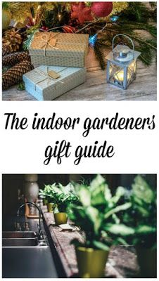 Indoor Gardening Gifts The indoor gardeners gift guide plants gift and homesteads the indoor gardeners gift guide workwithnaturefo
