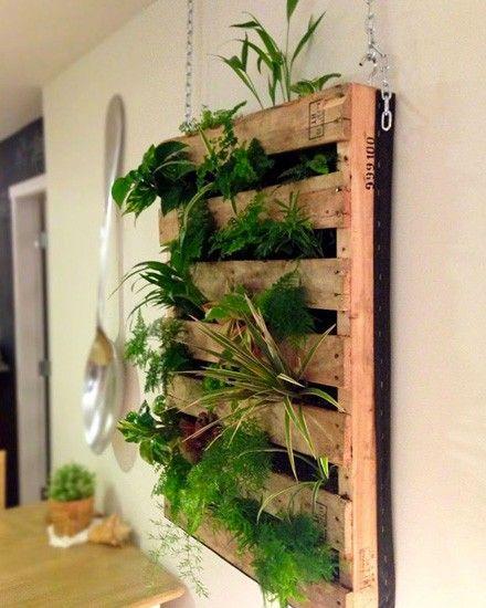un jardin vertical diy avec une palette vegetals. Black Bedroom Furniture Sets. Home Design Ideas