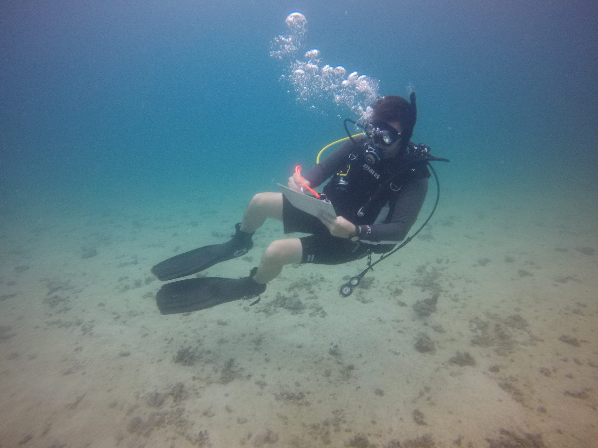 Home PADI Diving Instructor Scuba diving thailand