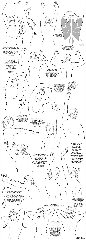 Sketches  Pinterest  Upper Body, The Shoulder And Design