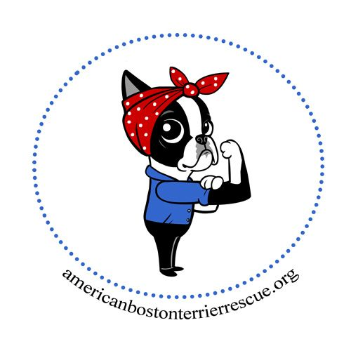 Rosie the Riveter Boston Terrier by Lili Chin