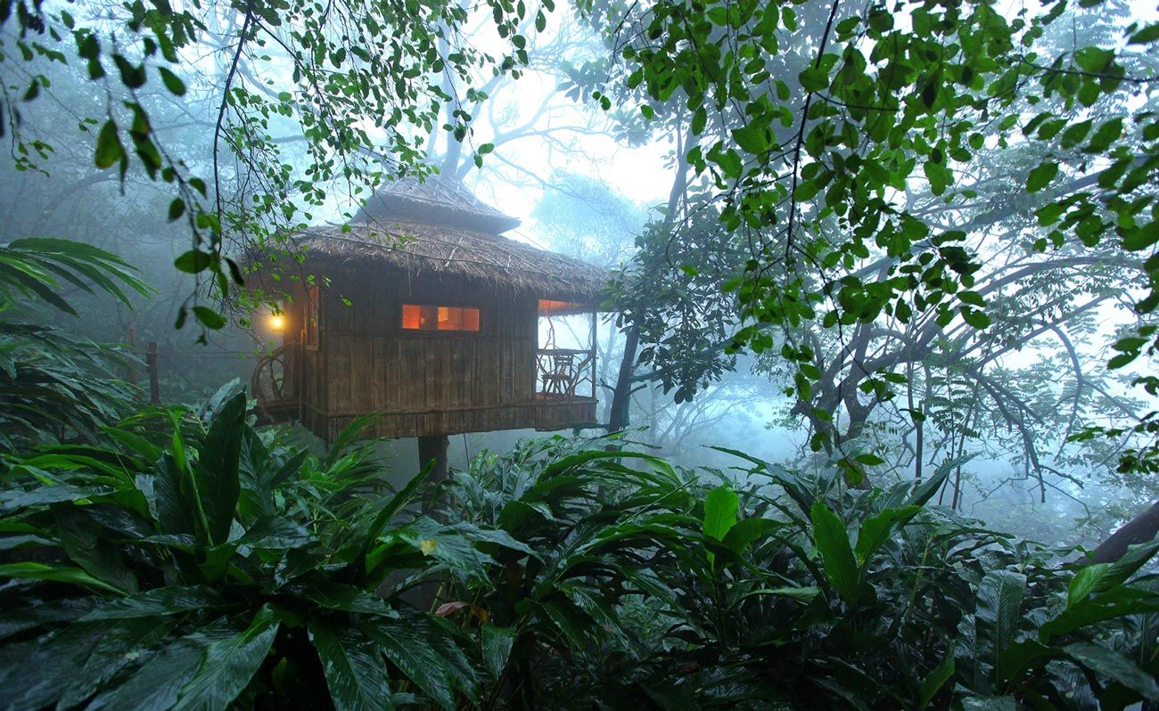 Treehouse stays for your next weekend break | Condé Nast Traveller India | India
