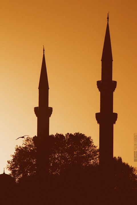 #photo #pic #picture #snapshot #color #all_shots #exposure #composition #focus #capture #moment #yazan_karkouti #canon #600d #turkey #istanbul #shadow http://ift.tt/2ckzA7O https://twitter.com/YazanKarkouti http://ift.tt/29Ezs1t http://ift.tt/2aLtc8A http://ift.tt/2aZFfm3 http://ift.tt/2aLtigo #modyoistanbul #modyo Modyo September 10 2016 at 12:55AM
