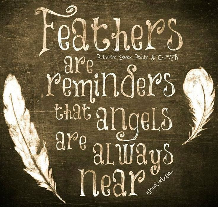 Feathers are a reminder that angels are always near.