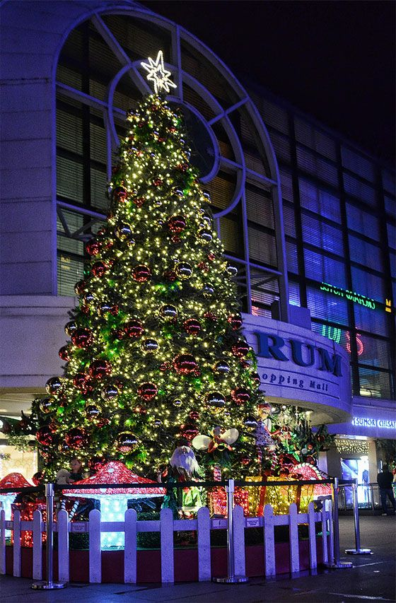Christmas tree at Forum the Shopping Mall, Singapore - Christmas Tree At Forum The Shopping Mall, Singapore Christmastime