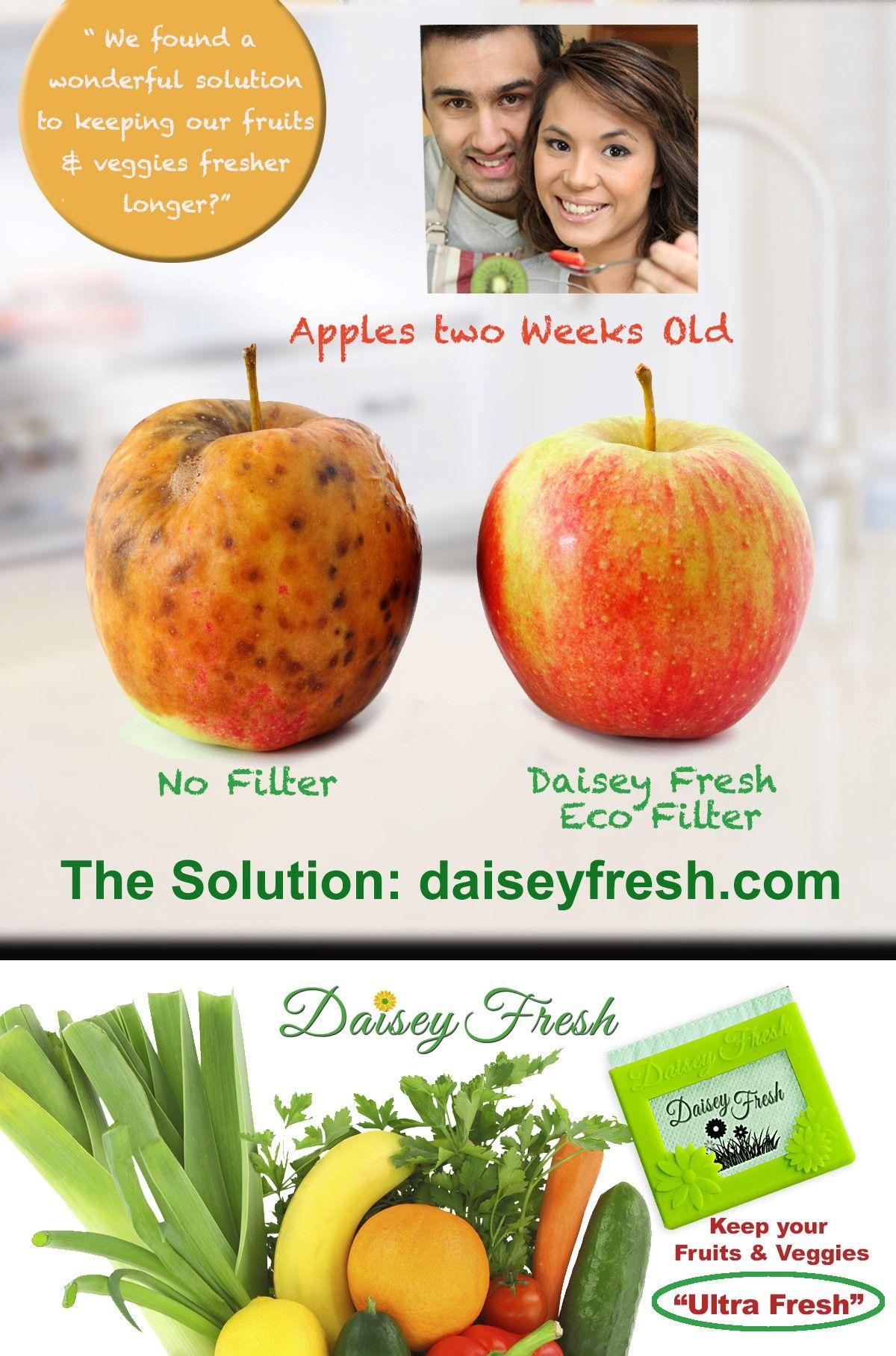 Daisey Fresh Eco Filter fresh freshness Get it at http