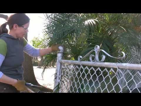 Convert 4 Ft Chain Link Fence To 6 Ft Wood Plastic Fence Youtube Chain Link Fence Fence Wood Fence