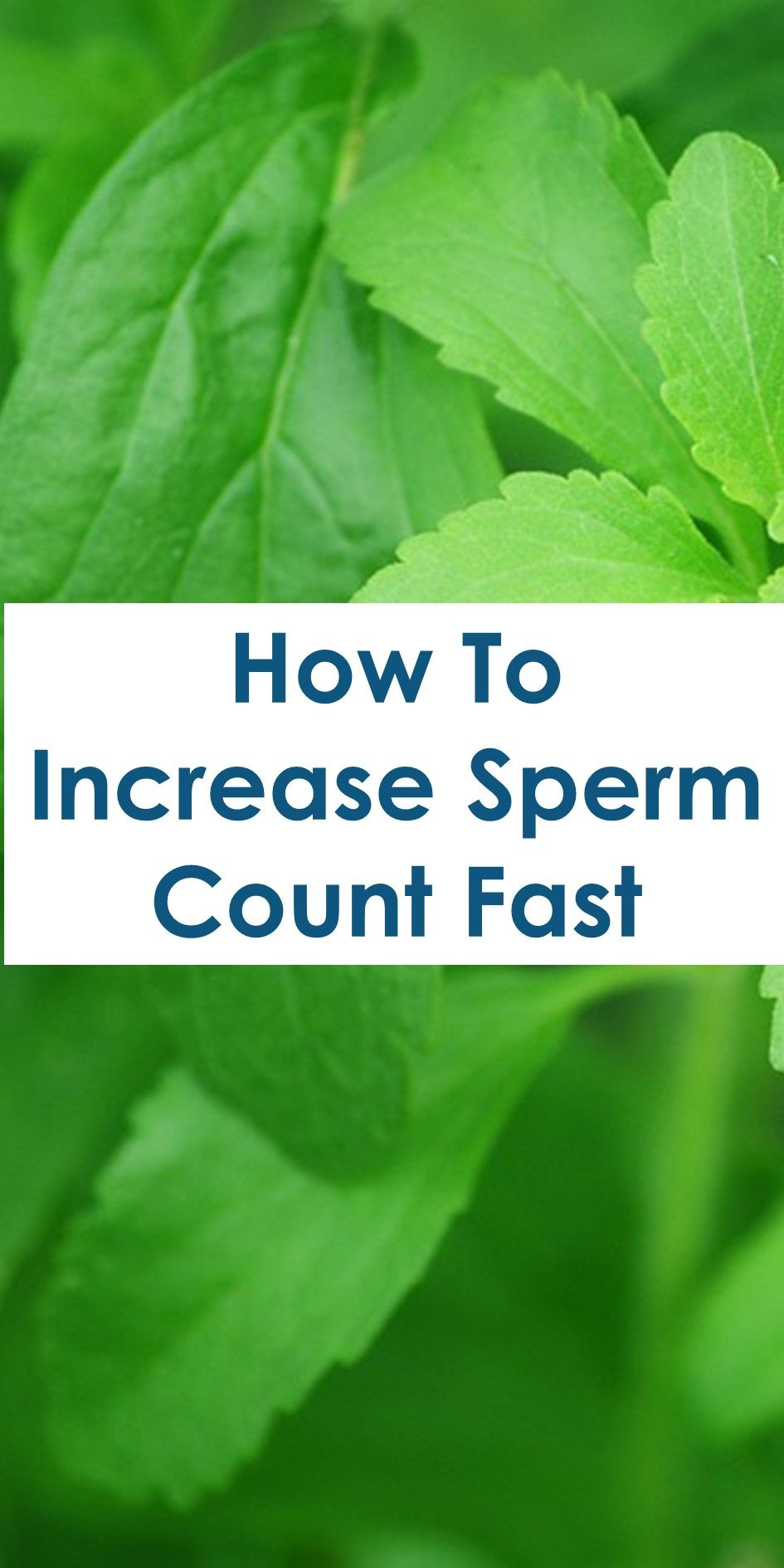 15 Home Remedies To Increase Low Sperm Count | Home Remedies