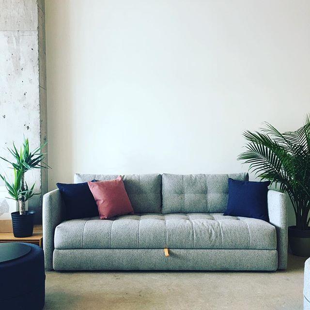 Fantastic The Sofa Bed Store Readyforspring Movienight Classic Evergreenethics Interior Chair Design Evergreenethicsorg