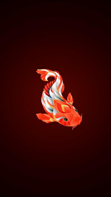 Koi Fish iPhone Wallpaper Free GetintoPik (With images