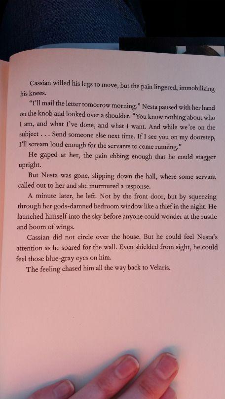 Part 15 Of The Bonus Scene With Nesta And Cassian Bookofademigod