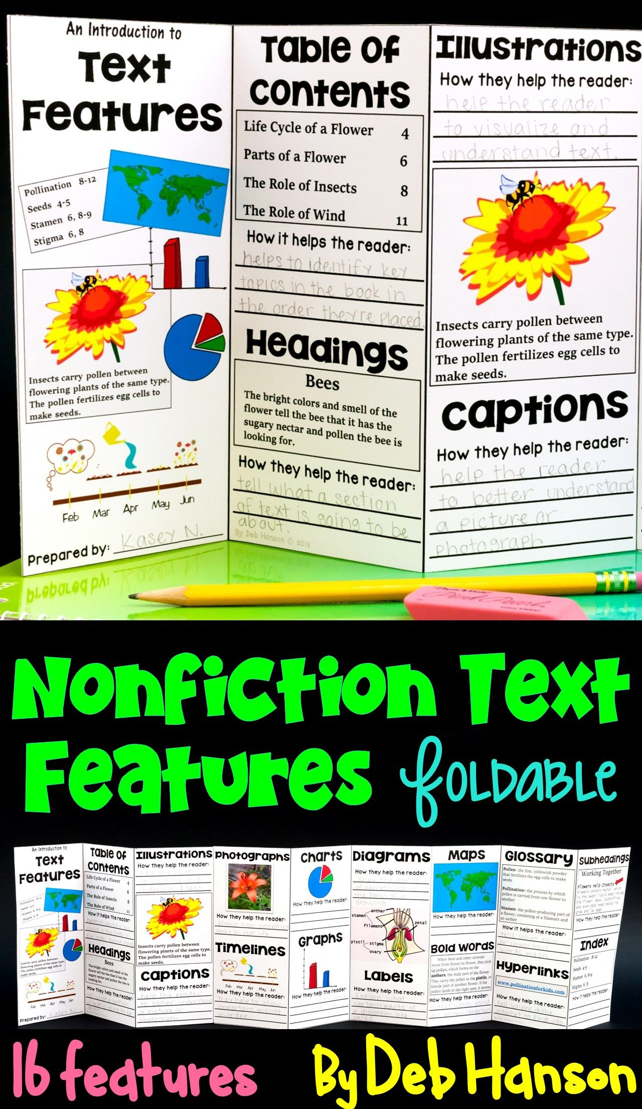 Nonfiction Text Features Foldable Craftivity Intro Version And Book Version