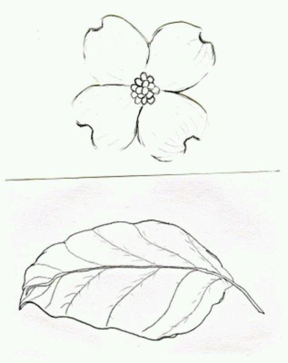 Dogwood Leaf Inspiring Ideas In 2019 Dogwood Flower