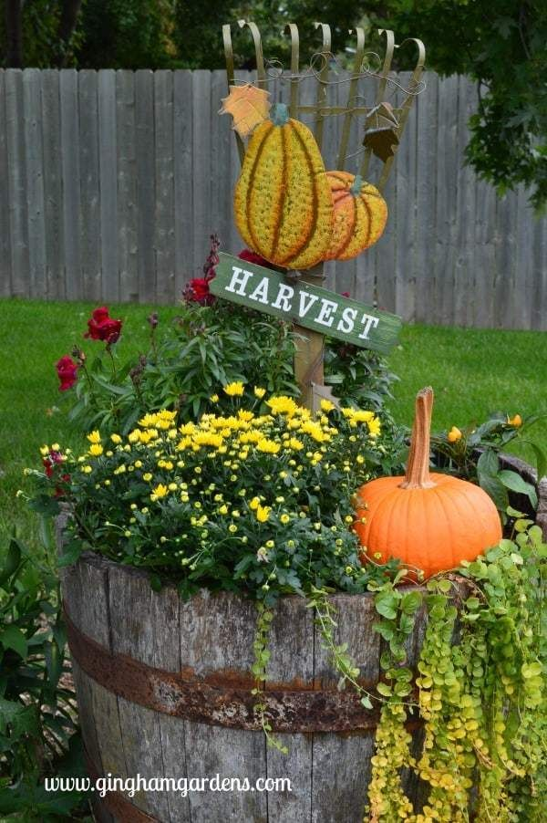 Tips on Transitioning Container Gardens to Fall is part of Fall container gardens, Fall flowers garden, Container gardening flowers, Fall garden decor, Whiskey barrel planter, Autumn garden - Fall is in the air! Come over and learn some Easy and Inexpensive Tips for Transitioning Container Gardens to Fall and get some Easy Fall Decor Ideas too